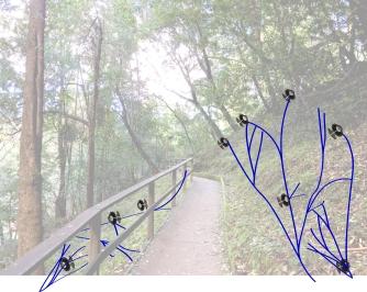 Site-System-Sketch
